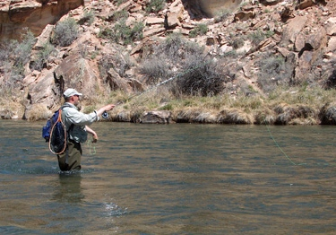 Fly Fishing for Trout - Gunnison River